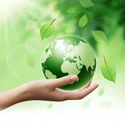 Lely Environnement, acteur majeur de la gestion des déchets non dangereux et de l'économie circulaire sur la région Rhône-Alpes.